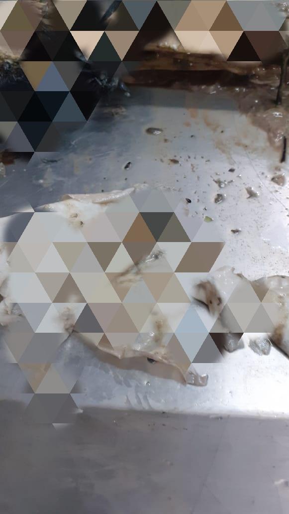 whatsapp-image-2020-02-03-at-13-16-38